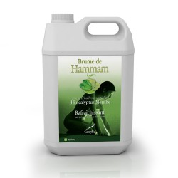 BRUME DE HAMMAM MENTHE EUCALYPTUS 5 litres